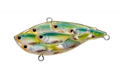рыбка золотая магазин рыболовных товаров